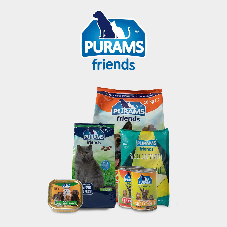 Logo Purams friends